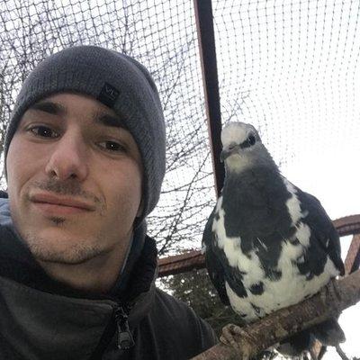 Profilbild von AlexSchäfer
