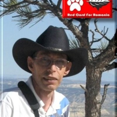 Profilbild von Felicat