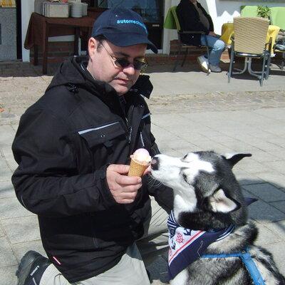 schlittenhund65