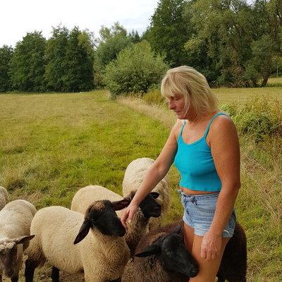 Profilbild von Schafkeeper