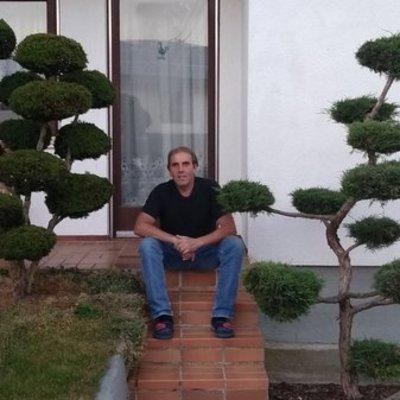Profilbild von arnoldi