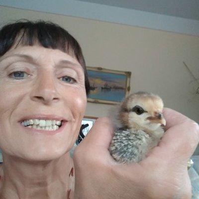 Profilbild von Liz
